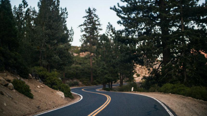 winding road in wods